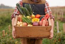 vitamins, diet, wellness, nutrition, vegetables