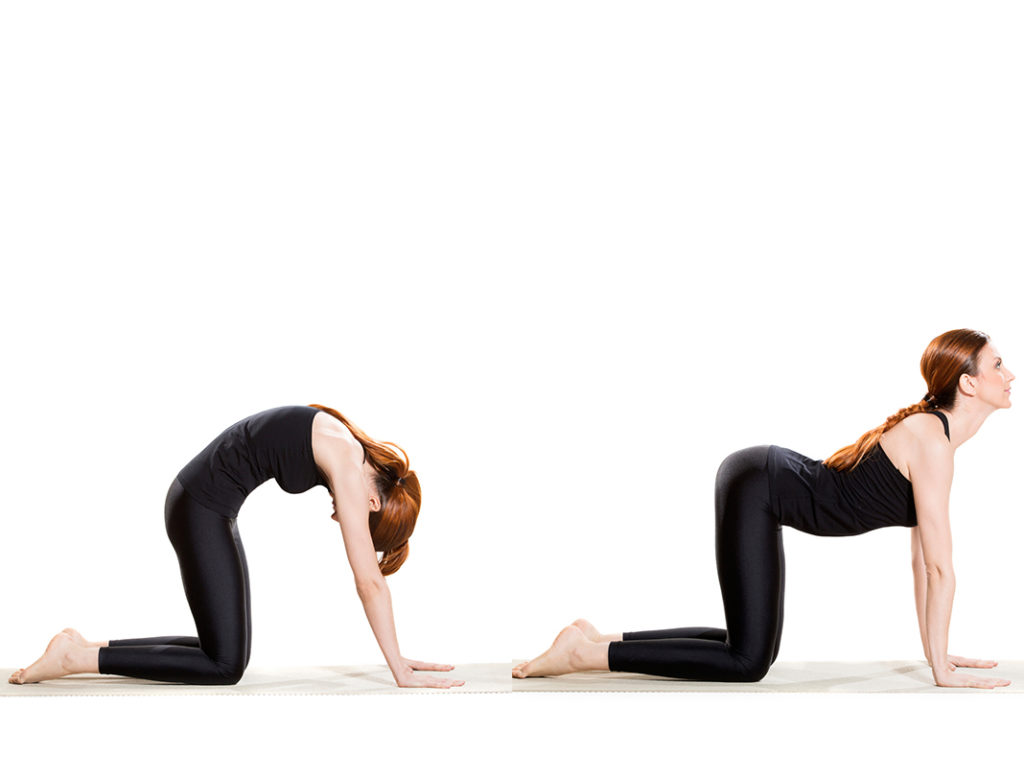 cat cow pose, yoga poses for lower back pain