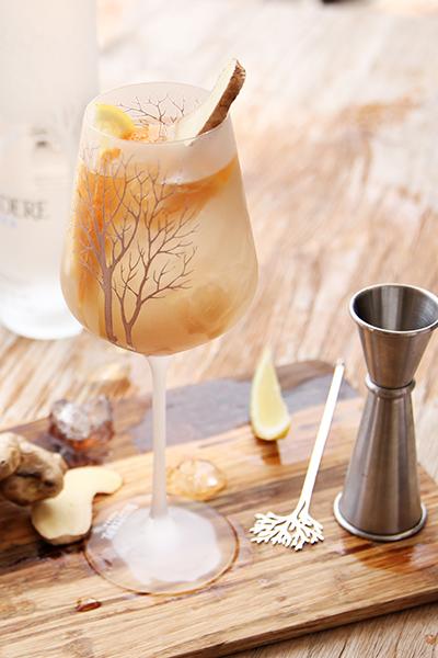 cocktails, cocktail recipe, ginger spritz, mr lyan,