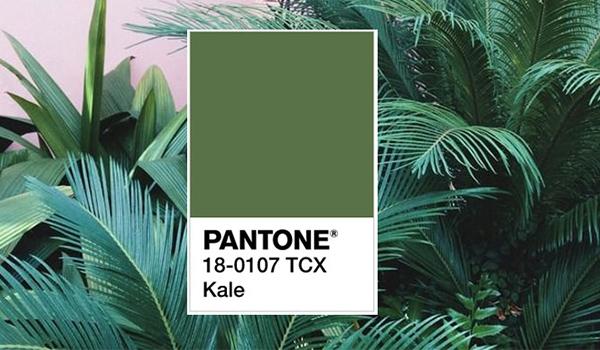 Pantone, kale, active wear, fashion trends