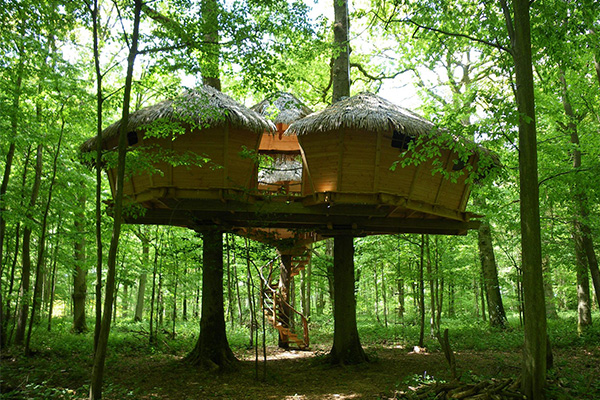 La Cabane en L'air, tree house,
