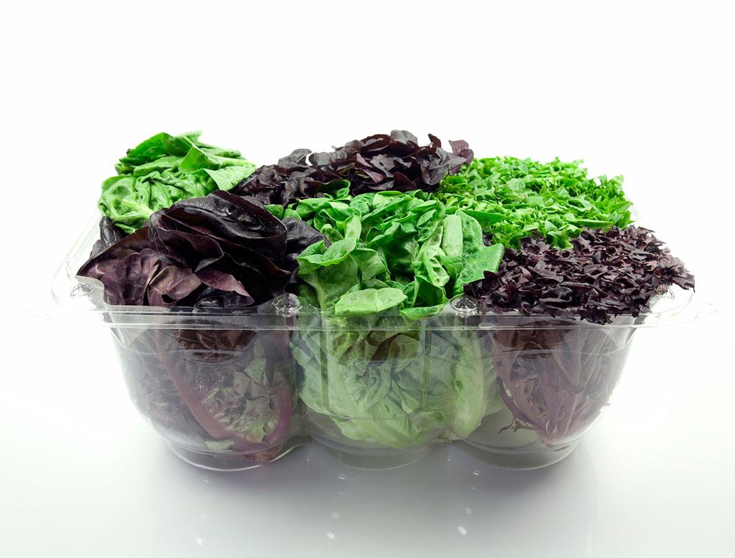 Salad, lettuce, refrigerator, groceries