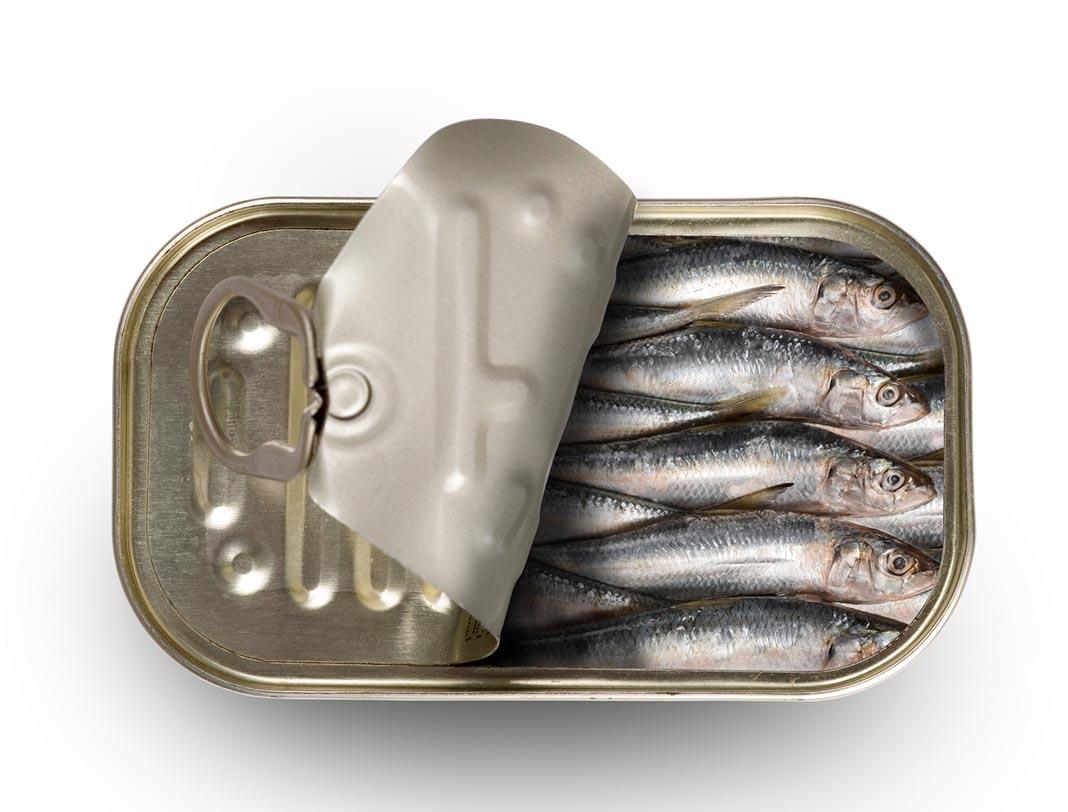 refrigerator, food safety, tinned fish, sardines
