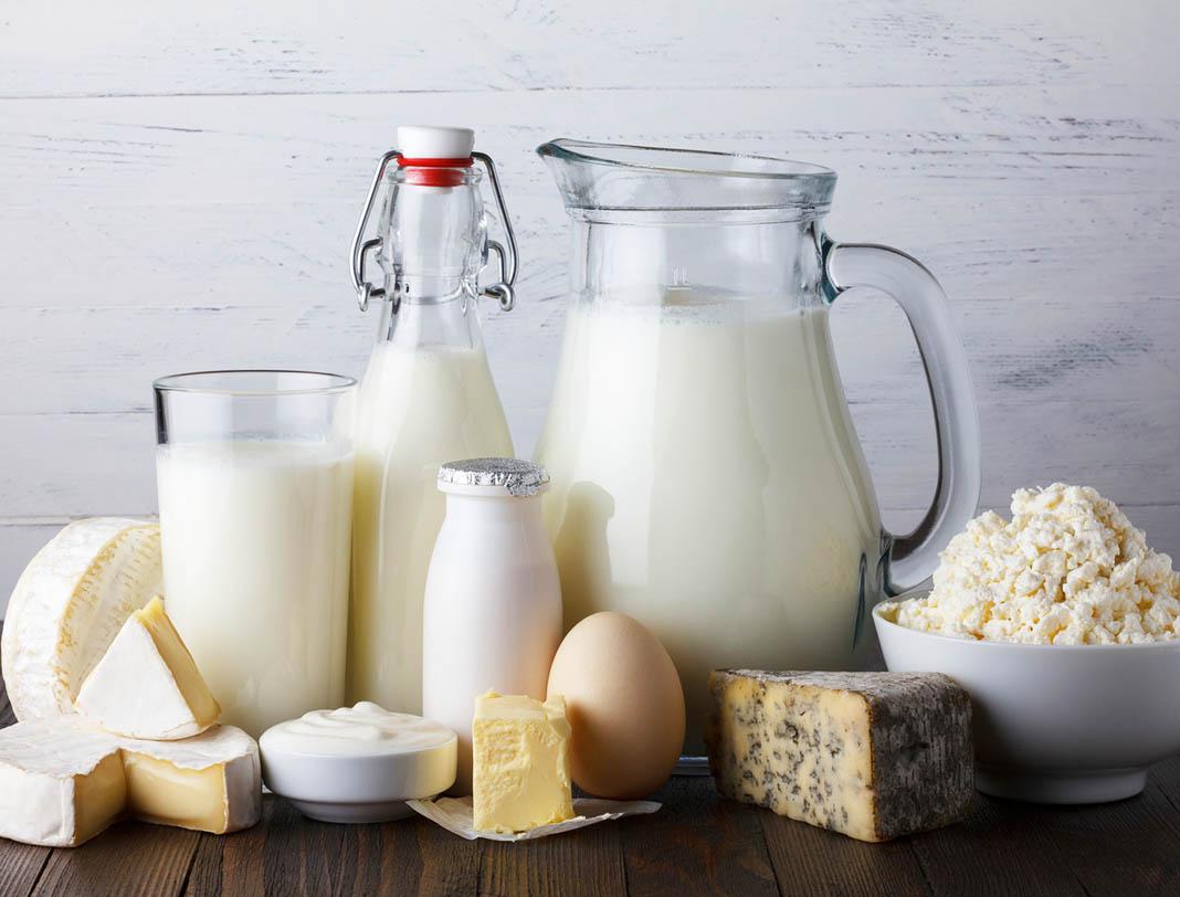 dairy, soft cheese, ricotta, refrigerator