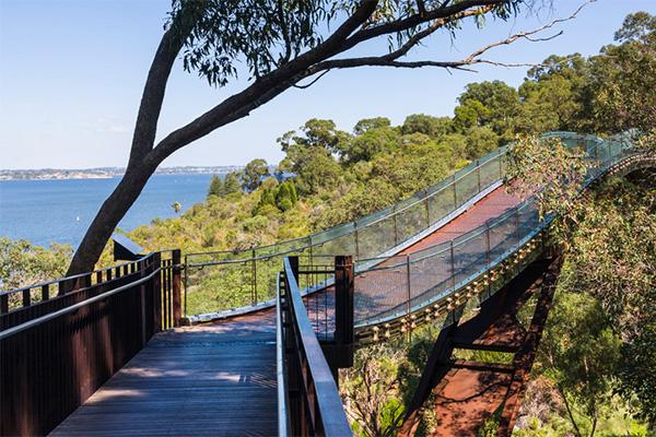 park, botanic, garden, bridge, Perth