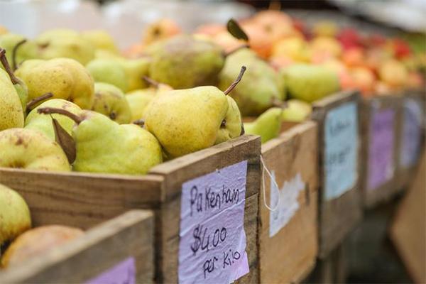 Slow Food Farmers' Market