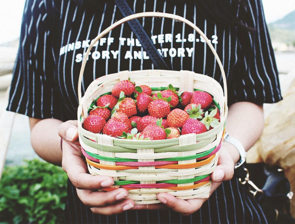 strawberries, fruit, basket of fruit, fresh picked fruit