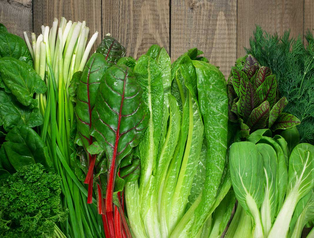 zero calorie foods, negative kilojoule foods