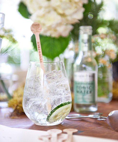 Gin and Tonic, G&T, cocktail recipes, Christmas
