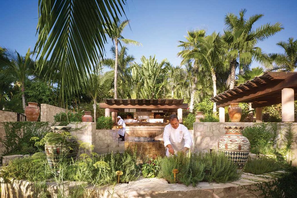 One & Only Palmilla Los Cabos Mexico herb garden