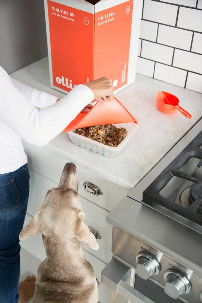 Ollie dog food