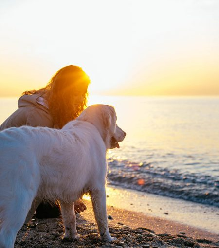 The Pet-Friendly Holiday Trend Allows You To Vacay With Your Furry Friend