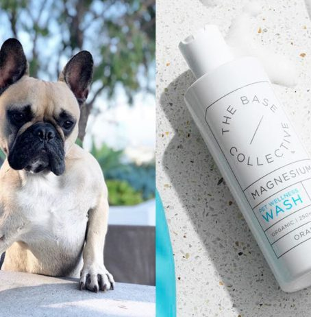 Fur Babies Need Magnesium Too—Here's How To Ensure They're Getting Enough
