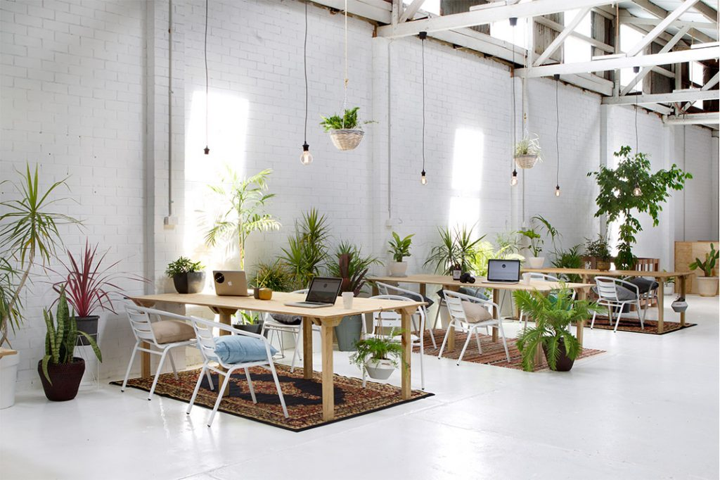 cleaver and co Inspiring Co-Working Spaces Around Australia