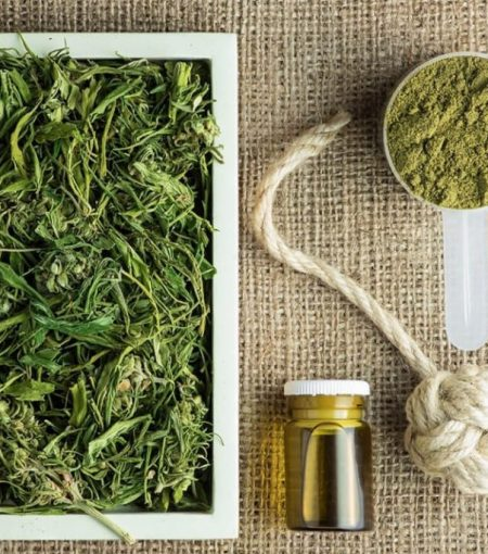 Your Guide To Understanding The Differences Between CBD, Hemp and Cannabis