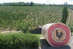 tuscany italy wine region