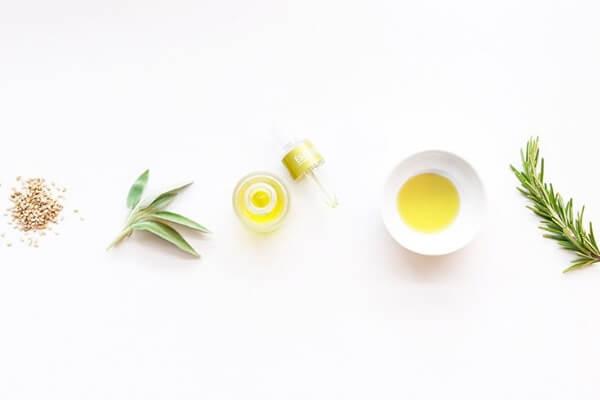 Borage oil and plants flatlay.