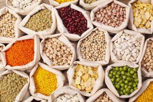 gundry diet leptins