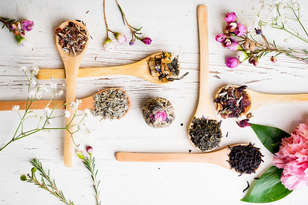 What Studying Naturopathy Has Taught Me About Stress & My Body