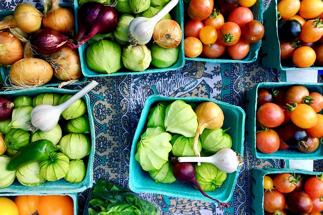 The 'Planetary Health Diet' Claims To Save Lives AND The Planet